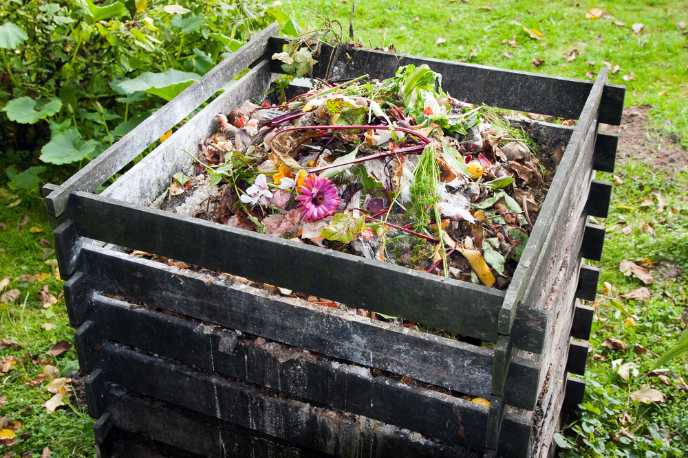 Different Types of Composters for Organic Fertilizer