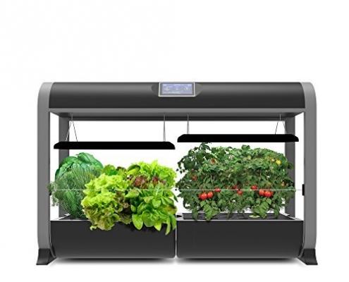 indoor food gardens